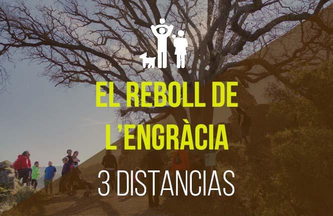 ES_plantilla_FAMILIAR_REBOLL
